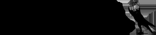 Voorburger Schildkröpfer